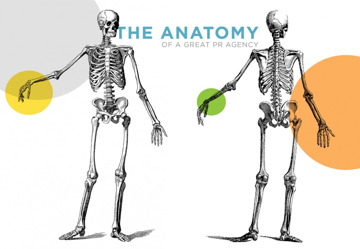 The Anatomy of a Great PR Agency